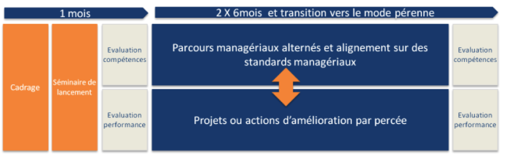 transformglobal-exemple