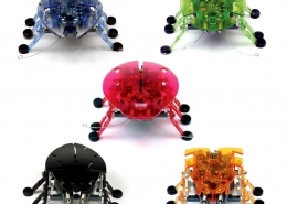 insecte-robot